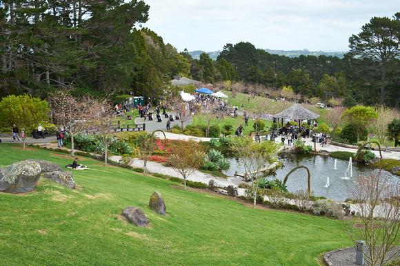 evoke studio auckland: Cherry Blossom Festival - Zen Garden - 2013 &emdash; Zen Garden 2013-09-29_0010