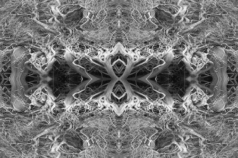 evoke studio auckland: all seans images &emdash;